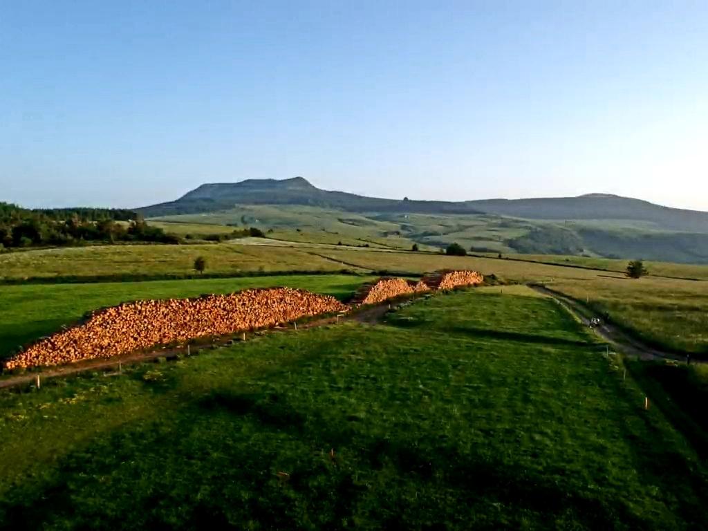 Paysage du plateau du Mézenc
